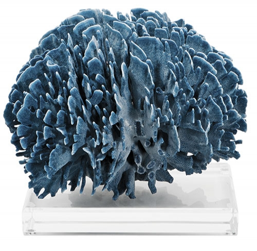 Natural Blue Coral on Lucite Base