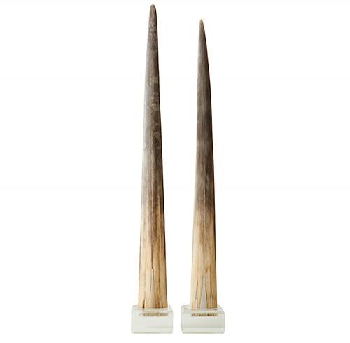 Pair of Swordfish Bills on Lucite Bases