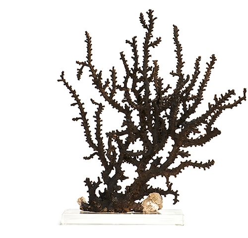 Pair of Black Octopus Corals on Lucite Bases HD-2097.jpg