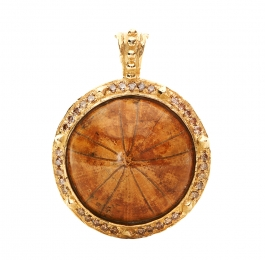 Fossilized Sea Biscuit & Diamond Pendant