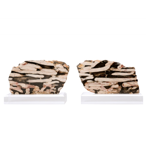 Pair of Polished Peanut Wood Pieces